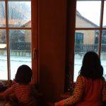 Über aus-Versehen-Bisse, Gott versus Weihnachtsmann, Zollstöcke und Polyester